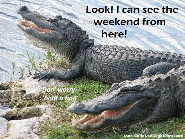 happy gator1